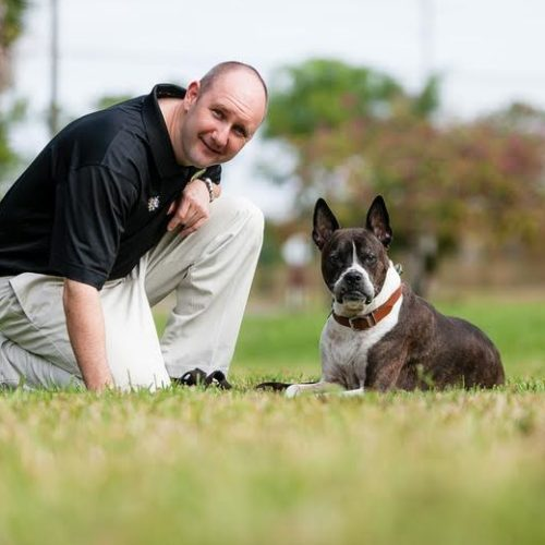 Bark Busters of Southwest Florida